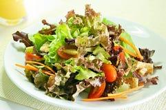 Salad. Fresh salad on white background Royalty Free Stock Photography