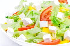Salad. Mediterranean-Style Salad with Feta and Olive oil Royalty Free Stock Photography