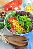 Salad. Mixed Salat with green salad leafes, cucumber, feta, lime and tomato Royalty Free Stock Photos