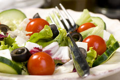 Free Salad Royalty Free Stock Images - 2978819