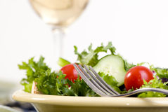 Salad Royalty Free Stock Photos