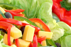 Salad. Delicious cheese pepper and lettuce salad Royalty Free Stock Photo