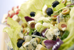 The Salad Royalty Free Stock Photography