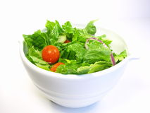 Salad. Leafy green salad in white bowl agains white background Stock Image