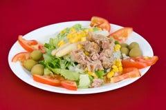 Salad. Colorful mixed salad with tuna fish Royalty Free Stock Photography