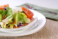 Salad. Healthy salad with lettuce, carrots, radish, cabbage, turkey, tomato wedges, and cheese Royalty Free Stock Photo