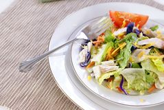 Salad. Healthy salad with lettuce, carrots, radish, cabbage, turkey, tomato wedges, and cheese Royalty Free Stock Photography