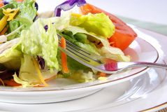 Salad. Healthy salad with lettuce, carrots, radish, cabbage, turkey, tomato wedges, and cheese Stock Image