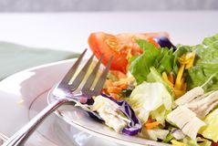Salad. Healthy salad with lettuce, carrots, radish, cabbage, turkey, tomato wedges, and cheese Stock Photography