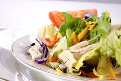 Salad. Healthy salad with lettuce, carrots, radish, cabbage, turkey, tomato wedges, and cheese Royalty Free Stock Image
