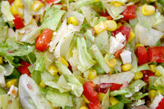 Salad. A mixed salad from above Royalty Free Stock Photography