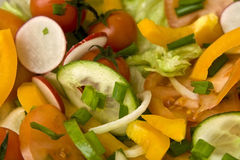 Salad. Fresh salad made of vegetables like tomatoes or cucumbers Royalty Free Stock Images