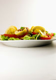 Salad. Green salad with tuna, lemon slices, oil, tomatoes,etc Royalty Free Stock Photography