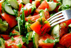 Salad. Of Tomatoes and Cucumbers Stock Photography
