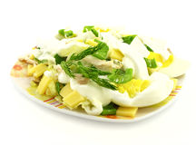 Salad. With eggs, cheese, fennel, ramsons and mayonnaise Royalty Free Stock Images