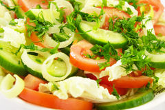 Salad. Close-up of a salad. Mixed lettuce with tomatoes, onion, cucumber and parsley Stock Images