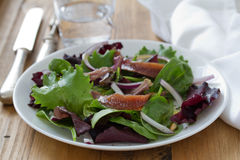 Salad with anchovies and onion Stock Photos