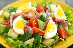 Salad with anchovies on a yellow plate. Royalty Free Stock Photo