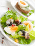 Salad with anchovy. Salad with lettuce, eggs and anchovy on kitchen towel Royalty Free Stock Photos