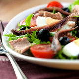 Salad with anchovy and tuna. Close-up of salad with anchovy,tuna and egg Stock Image