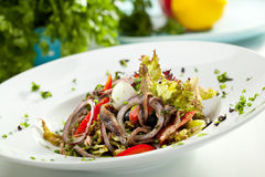 Salad with Anchovy. And Vegetables Royalty Free Stock Photos