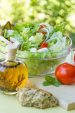 Salad - appetizer Stock Image