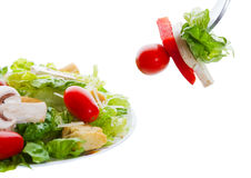 Salad appetizer royalty free stock photos