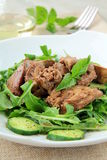 Salad appetizer with chicken liver, arugula. And cucumber stock photography
