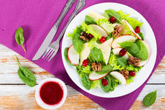 Salad of apple, spinach, cheese, lettuce leaves Stock Images