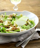 Salad with apples and cheese Royalty Free Stock Photography