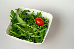 Salad with arugula Stock Photography