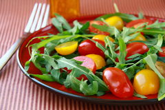 Salad with arugula and cherry tomatoes Royalty Free Stock Image