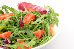 Salad with arugula and cherry tomatoes. Arugula and cherry tomatoes with olive oil close-up Stock Images