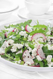 Salad with arugula, cottage cheese and radish Stock Images