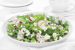 Salad with arugula, cottage cheese and radish Royalty Free Stock Images