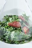 Salad of Arugula Stock Image