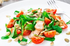Salad with arugula, salmon and cherry tomato Royalty Free Stock Images