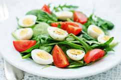 Salad with arugula, spinach, tomatoes and eggs. Tinting. selective focus stock images