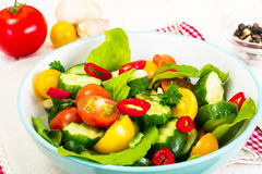 Salad with Arugula, Tomato, Cucumber and Garlic Stock Photography