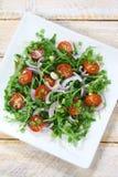Salad with arugula Stock Photography