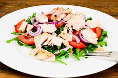 Salad with Arugula, Tomatoes, Turkey Breast, Grape Seed Oil, Soy Stock Photo