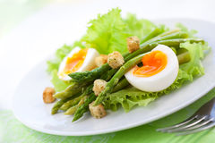 Salad with asparagus Royalty Free Stock Images