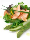 Salad of asparagus and salmon. Salad of asparagus iand salmon with vegetables royalty free stock photography