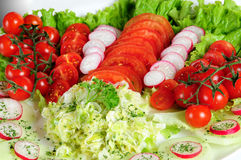 Salad assortment Royalty Free Stock Photo