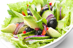 Salad with Avocado Royalty Free Stock Photos