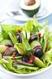 Salad with Avocado stock photography