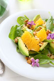Salad with avocado and orange Royalty Free Stock Images