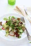 Salad with avocado and radish Stock Photography