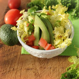Salad with avocado,tomatoes, endive Royalty Free Stock Photography