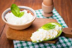 Salad in avocado Stock Photo